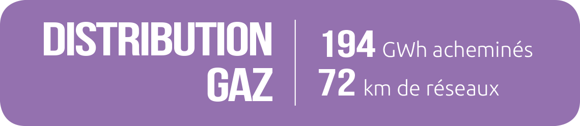 _distribution_gaz_2020