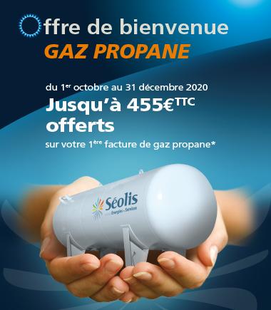 Encart_accueil_PART_GP_SEOLIS_10_2020