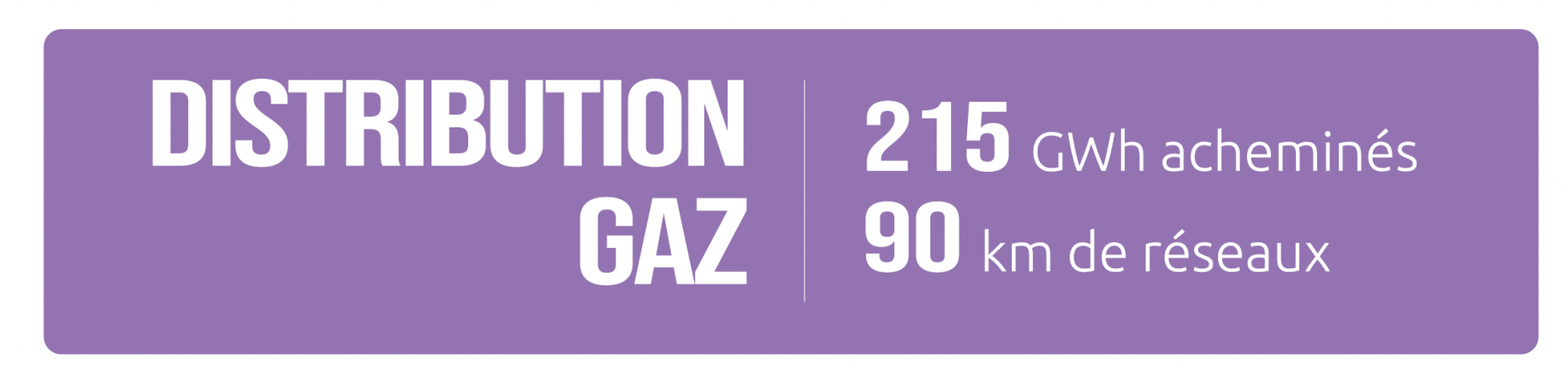 DISTRIBUTION GAZ 2021